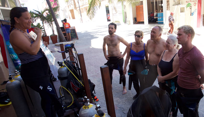 bull sharks dive briefing